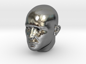 1/6 scale Highly detailed head figure Tete visage  in Polished Silver