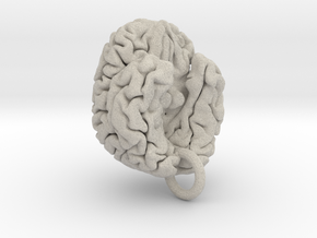Human brain in Natural Sandstone