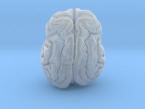 Leopard brain in Smooth Fine Detail Plastic