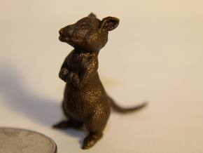 1 inch Mouse in Polished Bronze Steel