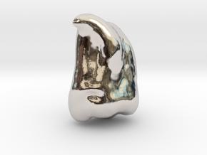 Human Tooth UM3 [PMF500] in Platinum