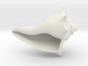 Whelk Model in White Strong & Flexible