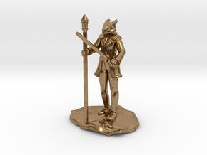 Dragonborn Ice Sorcerer in Natural Brass