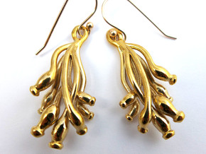 Ascilla Sponge earrings in Polished Bronze