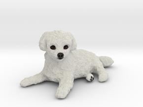Custom Dog Figurine - Jack in Full Color Sandstone