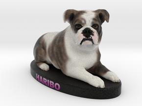 Custom Dog Figurine - Haribo in Full Color Sandstone