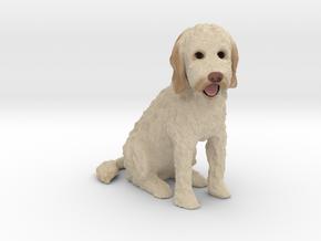 Custom Dog Figurine - Carlin in Full Color Sandstone