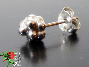 Camphor Earring Studs in Rhodium Plated Brass