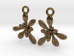 Arabidopsis Rosette Earrings  in Polished Bronze