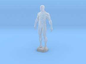 Male Anatomy Sculpture in Smooth Fine Detail Plastic
