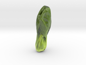 The Chinese Cabbage-mini in Coated Full Color Sandstone