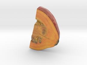 The Pumpkin-2-Quarter-2-mini in Glossy Full Color Sandstone