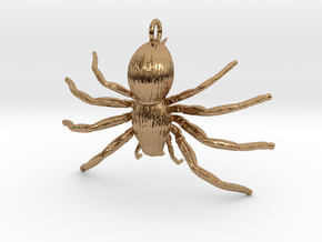 Spider Hecklace in Polished Brass