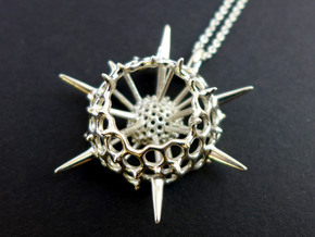 Large Spumellaria Radiolaria Pendant  in Polished Silver