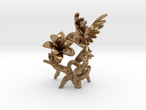 Hummingbird in Natural Brass