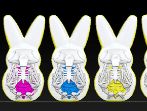 Peep Rabbit Collection in Full Color Sandstone