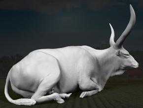 Ankole-Watusi 1:12 Lying Female 1 in White Strong & Flexible