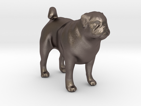 1/22 Pug Standing in Polished Bronzed Silver Steel