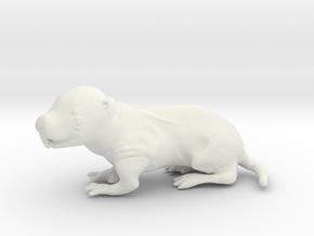 Naked mole rat in White Natural Versatile Plastic