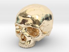 Skull    30mm width in 14K Yellow Gold