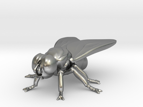 Fly small  in Natural Silver