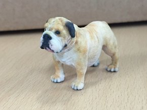 Bull Dog mini size (color) in Full Color Sandstone