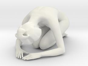 Japanese Girl 002 1/10 in White Strong & Flexible