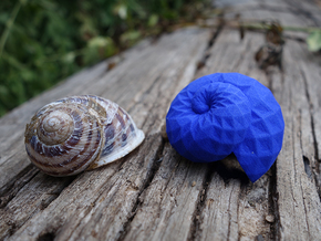 Snail Shell in Blue Processed Versatile Plastic