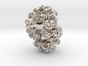 Nudibranch Pendant in Platinum: Medium