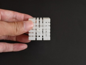 """Educational toys""  3D_Printer Maze No.5 in Frosted Ultra Detail"