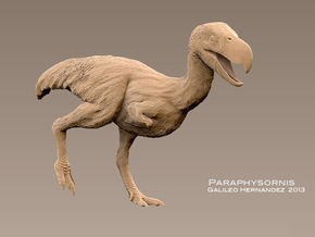Paraphysornis 1:20 v1 in White Strong & Flexible