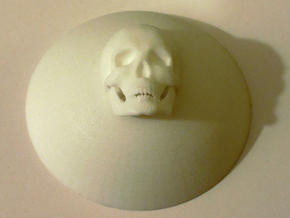 Skullcenters in White Natural Versatile Plastic