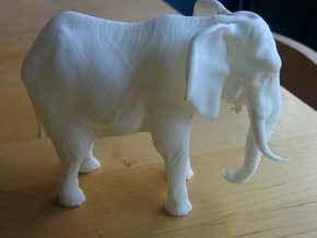 Elephant in White Processed Versatile Plastic