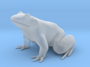Frog, for acrylic plastic in Smooth Fine Detail Plastic