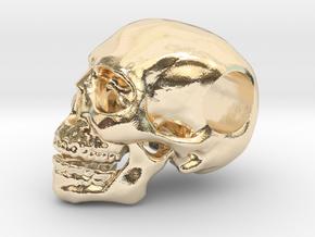 Hope Skull in 14k Gold Plated Brass