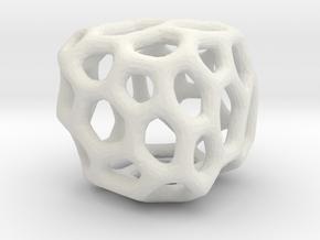 Coral Rock in White Natural Versatile Plastic: Small