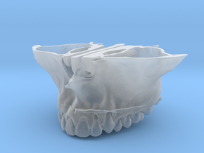 Constricted Maxilla | 3D BioModel in Smooth Fine Detail Plastic