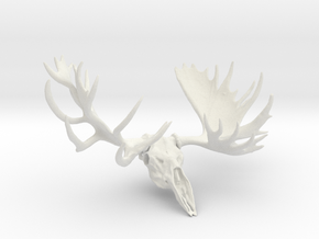 """Hook"" the Moose European Mount  in White Natural Versatile Plastic"