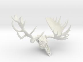 """Hook"" the Moose European Mount  in White Natural Versatile Plastic"