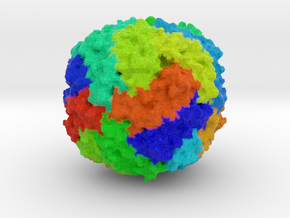 Human Ferritin Protein in Full Color Sandstone