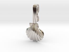 Seashell Collar Hanger in Rhodium Plated Brass