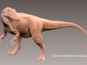 Carcharodontosaurus 1:72 v1 in White Strong & Flexible