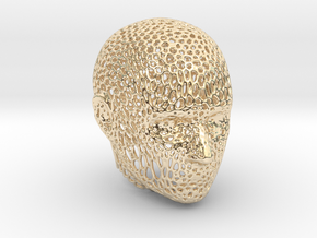Voronoi Head in 14K Yellow Gold