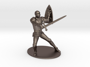 Paladin Miniature in Stainless Steel: 1:60.96
