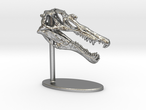Spinosaurus Skull in Natural Silver: Small