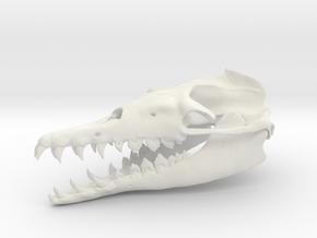 Basilosaurus Skull in White Natural Versatile Plastic