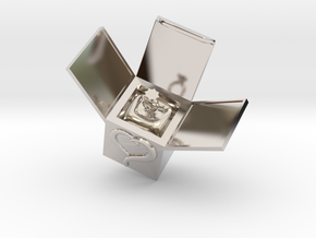 Box Ring  Jewelry (Smaller Size) in Rhodium Plated Brass: Small