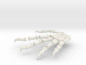 Komodo Rigth Foot Back 1:5 Scale in White Strong & Flexible