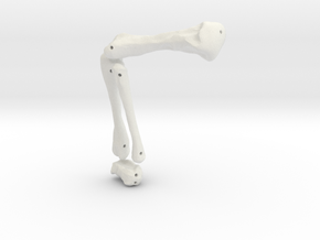 Komodo Rigth Leg Front 1:5 Scale in White Natural Versatile Plastic