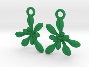 Arabidopsis Rosette Earrings  in Green Processed Versatile Plastic